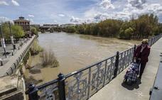 FOTOS: el Ebro crece en Logroño
