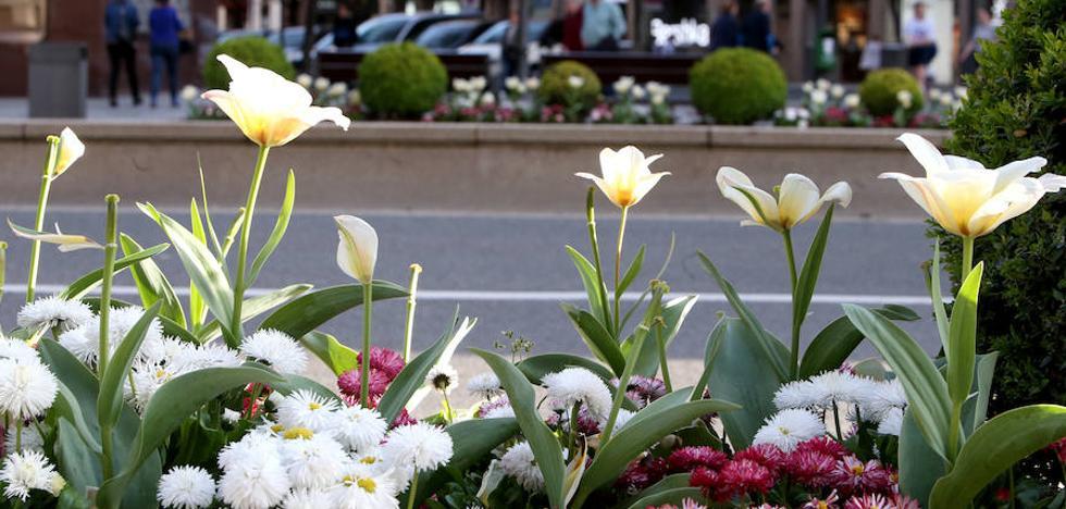 La primavera estalla también en la ciudad