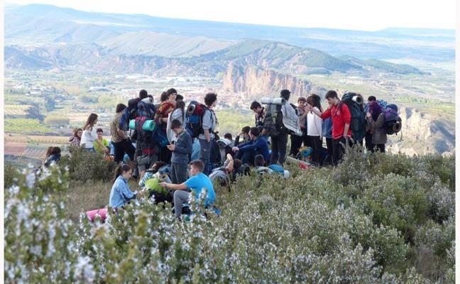 300 scouts celebran a San Jorge en Arnedo