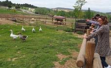 La Grajera reabre su granja con más de 70 animales
