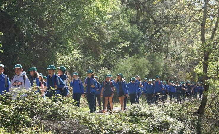 Peregrinación de escolares a Valvanera