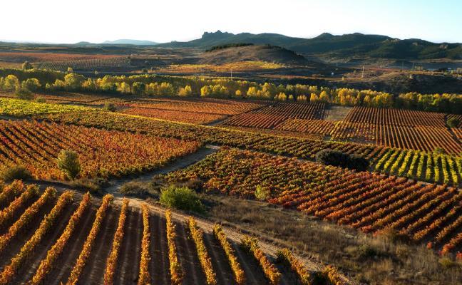 Preocupación y calma tensa en La Rioja Alta ante las decisiones de Fomento