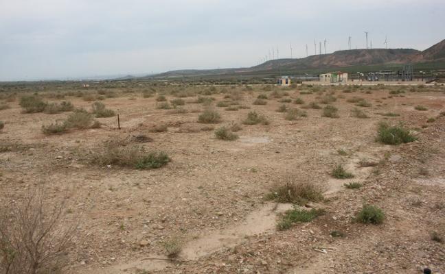La Maja alcanza el 25% de ocupación de sus terrenos