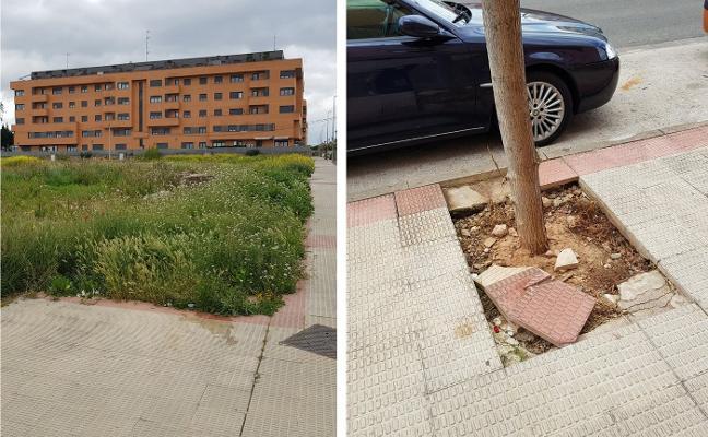 La Guindilla: abandono en el Entre Ríos de Lardero