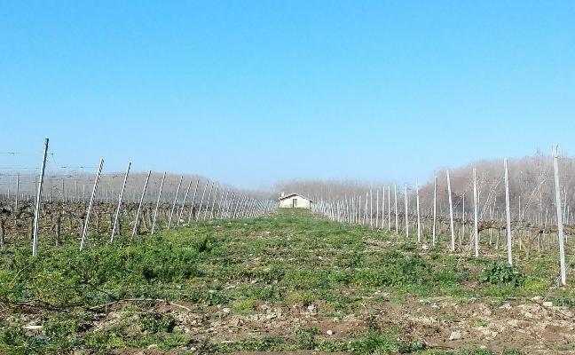 La plataforma contra el AVE critica «un despilfarro de 900 millones» que «parte La Rioja en dos»