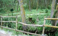 El vallado de madera del parque pedagógico de Nájera será renovado