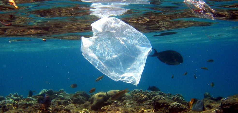 Guerra total contra el plástico