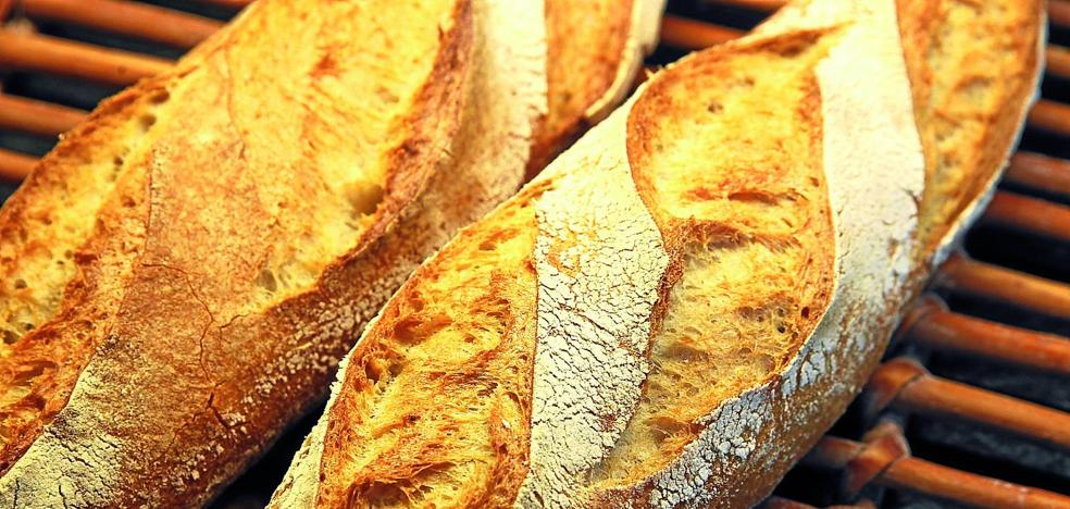 La masa madre es la clave y el alma de los mejores panes