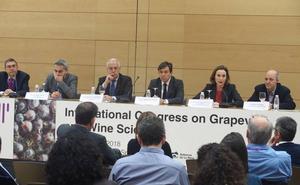 «La I+D+i vitivinícola debe ofrecer soluciones para la supervivencia de muchas zonas vitícolas»