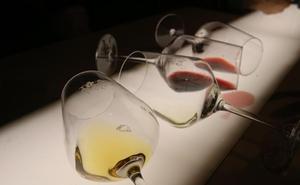 ¿Cómo se cata un vino? (VÍDEO)