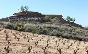 El sector vitivinícola riojano recibirá 6,8 millones de euros para promoción del vino