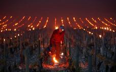 Francia amplía sus 'stocks' de vino