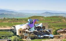 Historia esencial del vino de Rioja