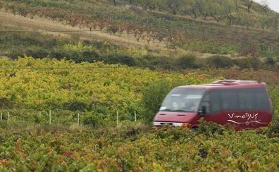 Cinco nuevas bodegas se unen al 'Vinobús' de La Rioja