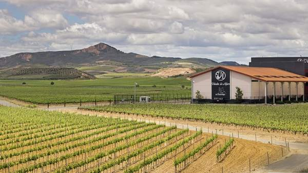 El grupo El Gaitero compra el 100% de Viñedos Alfaro
