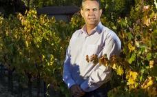 «Estamos a primer nivel en enología y tecnología, pero no en viticultura»