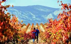 Rioja, referente del enoturismo de calidad