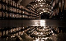 El vino, bajo el punto de vista de cien objetivos