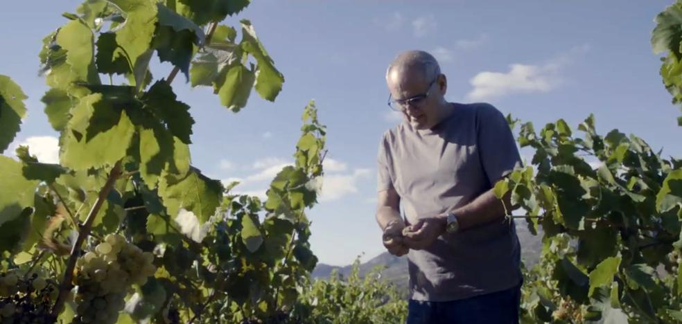 Pedro Ballesteros presenta las nuevas indicaciones geográficas de vinos de Rioja