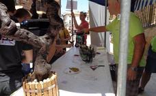 El vino sale a las plazas de Labastida