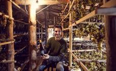 Bodegas Ojuel: elaborar vino «a la antigua usanza»