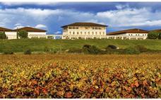 Bodegas Rioja Vega: tradición desde el siglo XIX