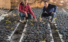 Bodegas Tritium: «Cariño personal a los viñedos viejos»