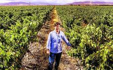 84 parcelas de 50 bodegas se convierten en los primeros viñedos singulares de Rioja