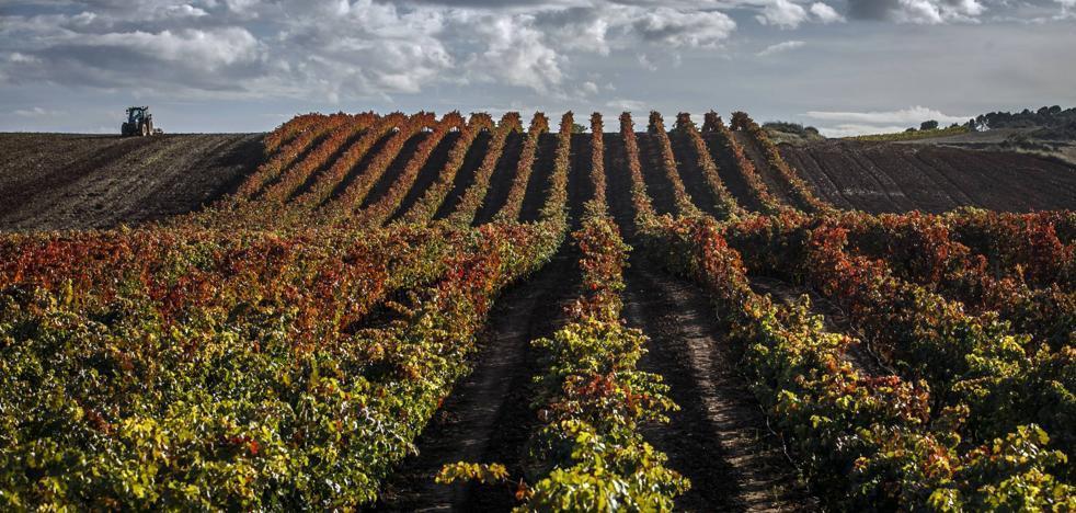10 paisajes de otoño en La Rioja