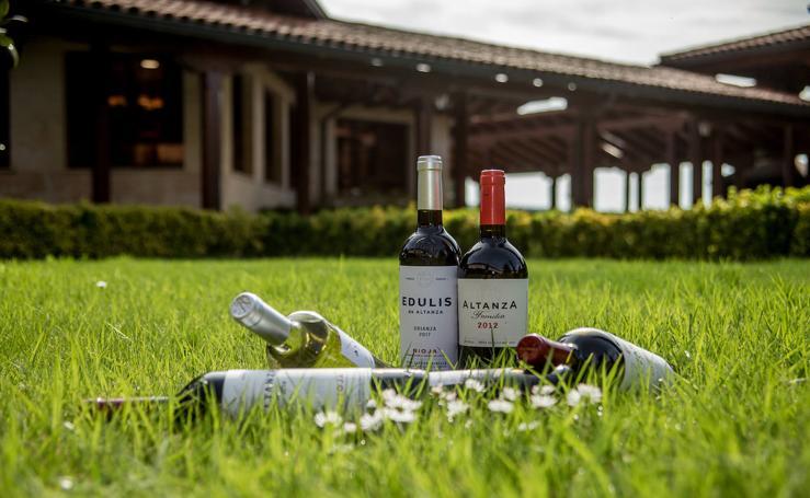 Los vinos de Altanza lucen nuevas etiquetas