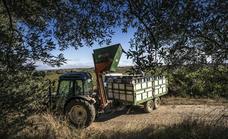 Preocupación de las organizaciones agrarias por la falta de operaciones