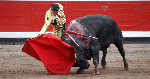 Oreja para Urdiales en Bilbao bilaketarekin bat datozen irudiak