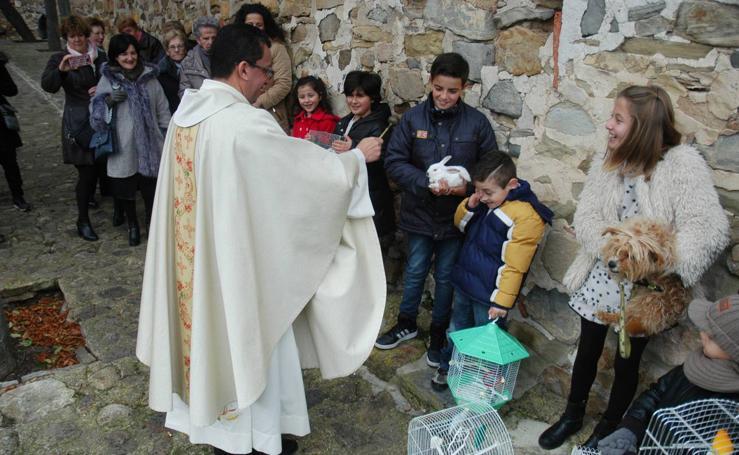 Grávalos celebra San Antón