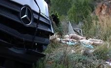 Un camión cargado de cerdos vuelca en una carretera valenciana