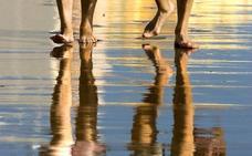 Las pernoctaciones de turistas riojanos en Cádiz crecieron el 36% en 2017
