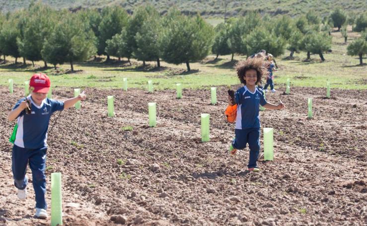 Los niños plantan sus árboles en La Grajera