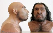 La forma del cerebro de los neandertales pudo contribuir a su extinción