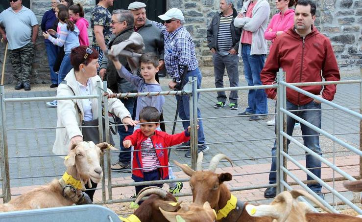 Feria de ganado en Soto en Cameros