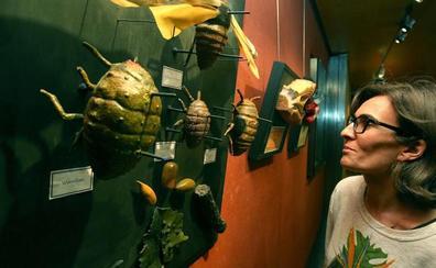 Una exposición aglutina los 175 años de historia científica del Sagasta