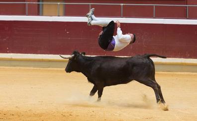 Espectáculo de recortadores y vaquillas en La Ribera