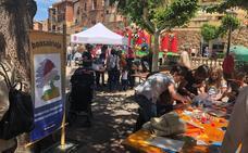 Fin de semana solidario en Navarrete