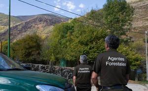 C's pide más plazas de forestales y una ley para el colectivo