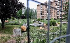 El PSOE denuncia una «tala indiscriminada» de los árboles de la Plaza México