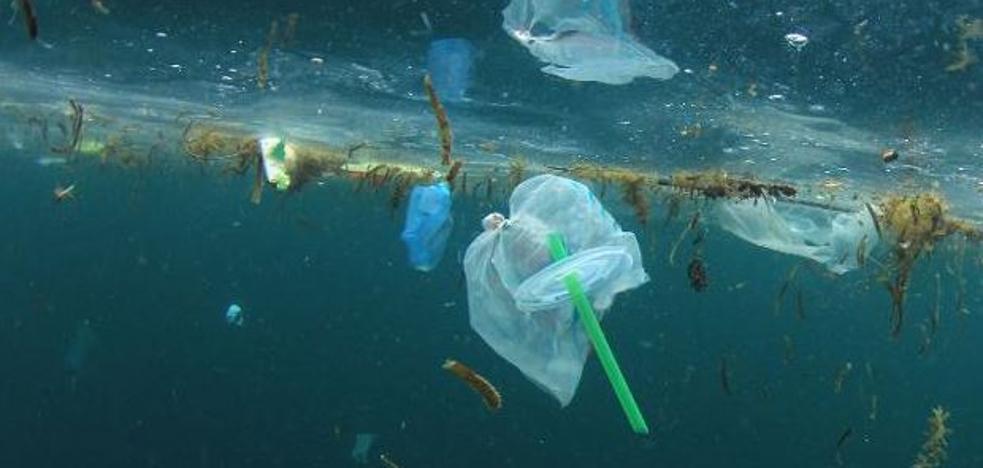 Vivir sin plástico... o comérselo