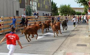 Calahorra licita los seis encierros para las fiestas de agosto por 29.400 euros