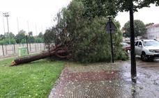 Una fuerte tormenta deja 18 litros en media hora en Logroño y más de 50 incidencias