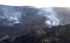 Un incendio quema varias hectáreas de cereal entre Foncea y Treviana