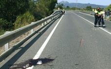 Mueren dos ciclistas arrollados en Tarragona por un conductor de 18 años que dio positivo en drogas