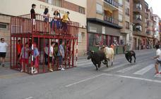 Los eventos taurinos, imprescindibles en las fiestas de Rincón de Soto