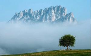 La exposición itinerante sobre la Naturaleza de La Rioja llega a Haro